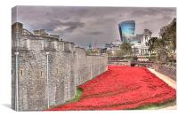 TOWER OF LONDON POPPIES, Canvas Print
