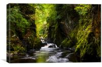 Fairy Glen, North Wales, Canvas Print