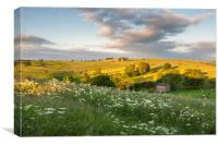 Summer countryside, Canvas Print
