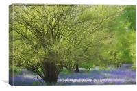Painted bluebells :), Canvas Print
