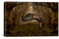 Feathers Of The Enchanted Forest, Canvas Print