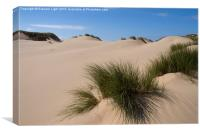 Sand dunes at Formby, Canvas Print