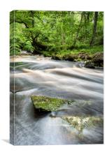 After The Rain at Mallyan Spout, Canvas Print