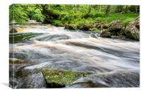 Mallyan Spout, Canvas Print