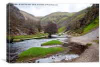 Islands in the stream, Dovedale, Canvas Print