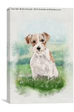 Jack Russell Terrier, Canvas Print