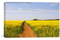 The Path to Bosworth Field, Canvas Print