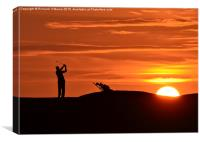 Golfer at sunset, Canvas Print