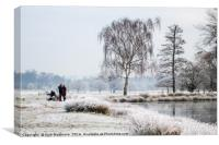 Frosty day at the pond, Canvas Print