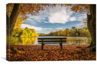 The Bench; Hartsholme Park, Lincoln, Canvas Print