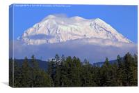 Mount Rainier, Canvas Print