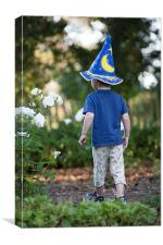 The young wizard, Canvas Print