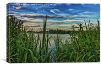 View from the reeds, Canvas Print