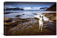 Glacier Guardian , Canvas Print