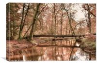 Forest Reflections, Canvas Print