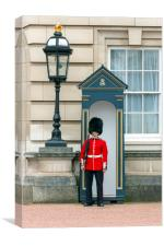 Guard to the Buckingham Palace, Canvas Print