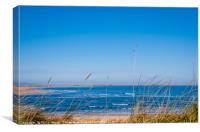 Dunes to the Bay.........., Canvas Print