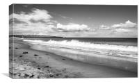 Beach view to St. Marys Lighthouse Mono, Canvas Print