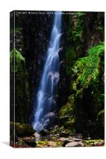 Scale Force waterfall, Canvas Print