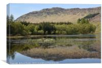 reflection on Loch Lubhair in the Highlands of Sco, Canvas Print