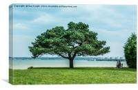 A view from Prospect Place,Hythe,Hampshire, Canvas Print