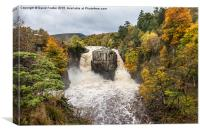 High Force Upper Teesdale County Durham England, Canvas Print
