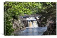Low Force from the Pennine Way, Teesdale, County D, Canvas Print