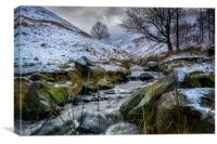 Dovestone Snow, Canvas Print