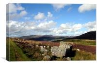 The Arenig Valley And Llyn Celyn, Canvas Print