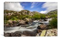 Summer in Snowdonia, Canvas Print