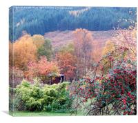 Shelter in the Autumn colours. , Canvas Print