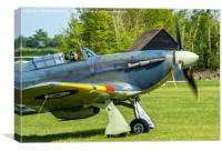 Hawker Sea Hurricane, Canvas Print
