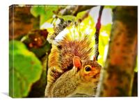 squirrell Watching you, Canvas Print