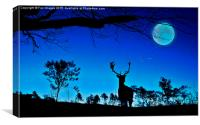deer and moon, Canvas Print