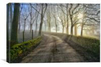 Misty morning in Birtle, Canvas Print