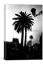 Palm tree in Seville, Canvas Print
