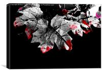 And The Leaves Bleed., Canvas Print