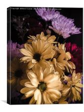 Dreaming of Daisy , Canvas Print