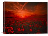 Poppy Field for Remembrance. Lest we Forget, Canvas Print