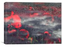 Poppies of Remembrance , Canvas Print