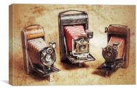 Old Cameras, Canvas Print