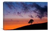Dusk at the Roaches, Peak District., Canvas Print