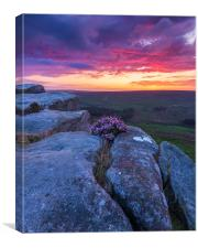Peak District Purple Sunrise , Canvas Print