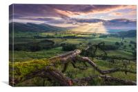 The Fallen. Hope Valley Sunrise. , Canvas Print