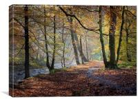 Hebden Water, Yorkshire, Autumn, Canvas Print