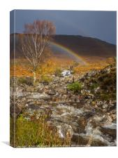 Falls on the Allt Toll a' Mhuic, Canvas Print