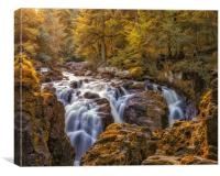 Autumn colours at the Falls of Braan near Dunkeld, Canvas Print