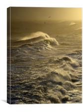 The Waves, Canvas Print