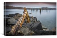 Remains of the Pier, Canvas Print