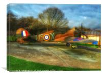 A Speacil place to the few , Canvas Print